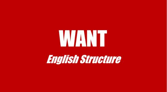 cấu trúc want trong tiếng anh